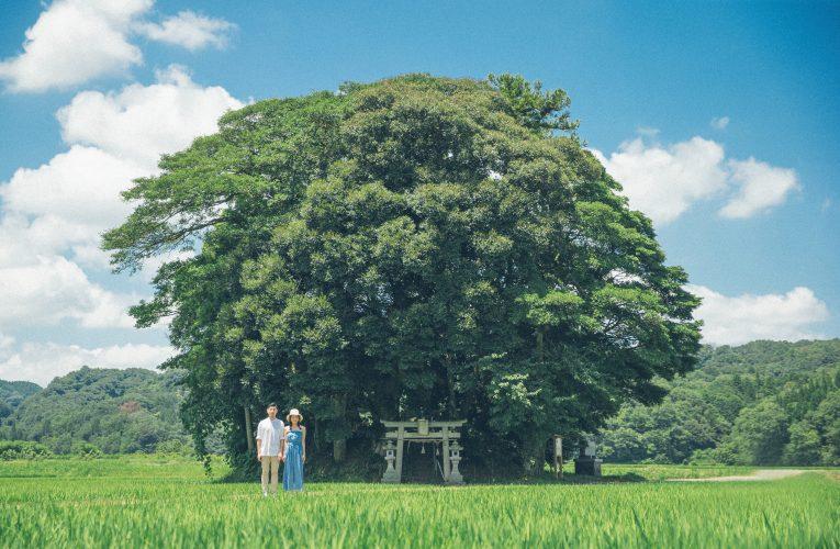 【日本婚攝】新興婚攝地。鳥取|3大動漫主題,拍出最時尚婚照